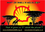 What is Shell's Wild Lie?