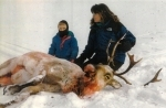 The arrow Palin shot into the nose of this moose was removed before the picture