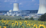 Areva Nuclear Plant and Sunflowers