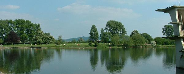 Foreground: Coate Water Country Park. Background: Coate
