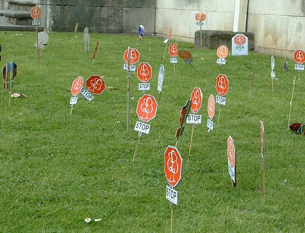 A small forest of STOP signs outside the Civic Offices