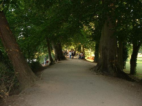 ...down the pleasant tree-lined avenue...