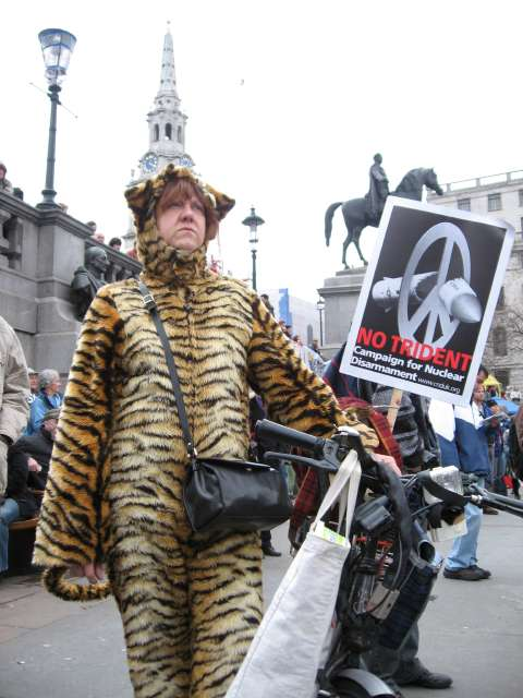 Climate chaos protester tops off tiger suit with St Martin's Spire headgear
