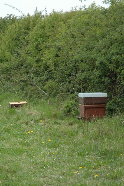 ... this is why. But if the trials go ahead, bee keepers will remove the boxes