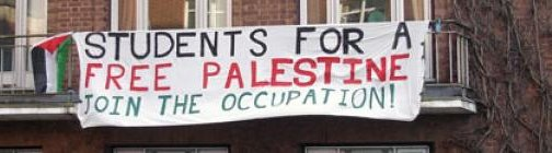 Student for a free palestine - occupations