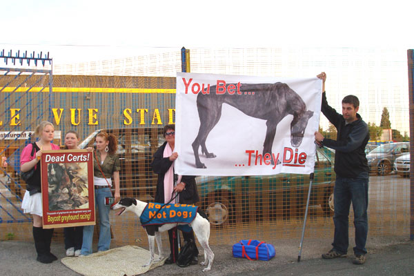One of the weekly demonstrations now taking place outside Belle Vue Stadium
