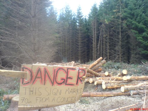 Trees felled and machinery operated near tunnels