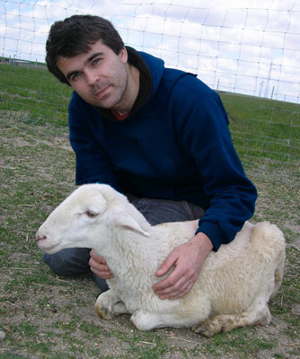 OPEN RESCUE OF 4 LAMBS – DEDICATED TO BARRY HORNE (Spain)