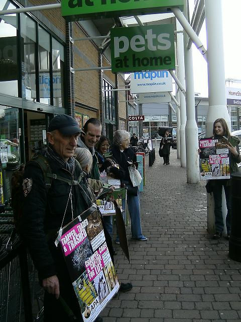 Reptiles Pets at Home Pets at Home Shame on You