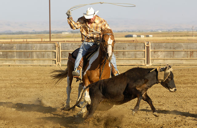 Romney brought brutal rodeo to the Salt Lake City Olympics
