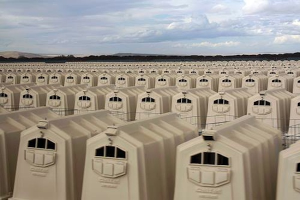 A US concentration camp for calves in Oregon