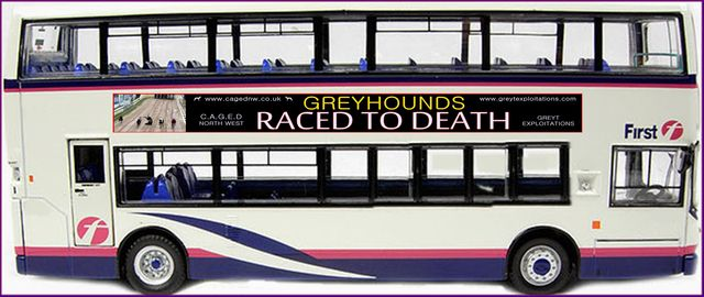 The CAGED NorthWest Raced to Death Bus campaign