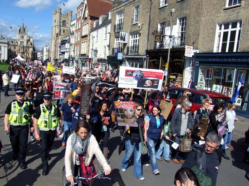 Marching for Animal Rights up Kings Parade.